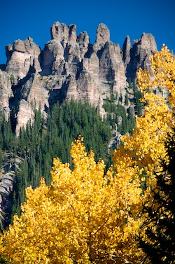 Ridgway Colorado Autmn Foliage Yellow Aspens Owl Creek Pass Dallas Divide San Juan Mountains