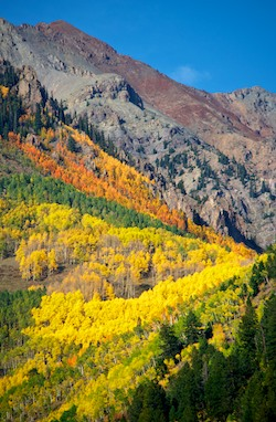 Telluride Colorado Autumn Colors Last Dollar Road Dallas Divide San Juan Mountains
