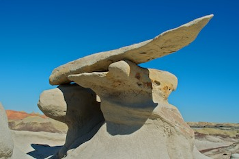 Bisti Badlands New Mexico Wings