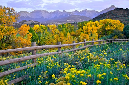 Dallas Divide Colorado between Ridgway and Telluride Fall Foliage Colors in the San Juan mountains