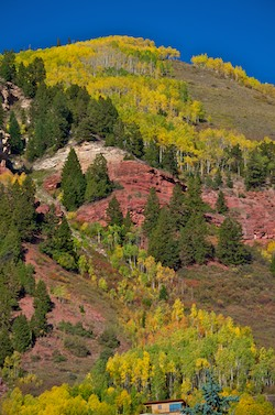 Telluride Colorado Fall Colors