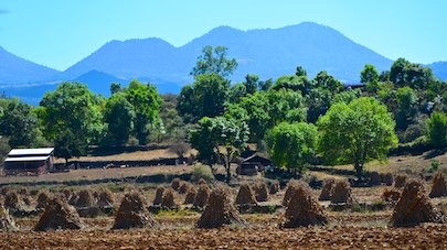 Hay stacks Michoacan Mexico sailing blog
