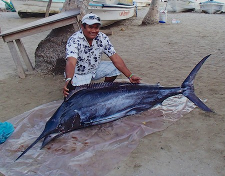 09 Mexico cruising blog Zihuatanejo marlin fisherman fish market 405
