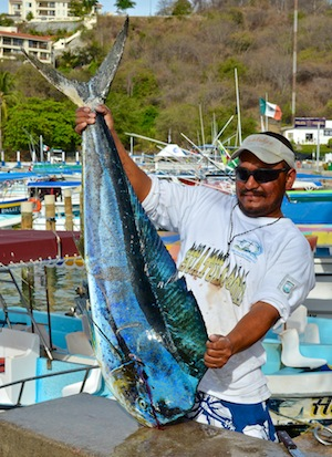 Catch of the day - Huatulco