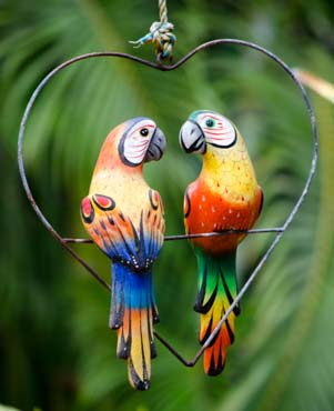 Macaws in heart