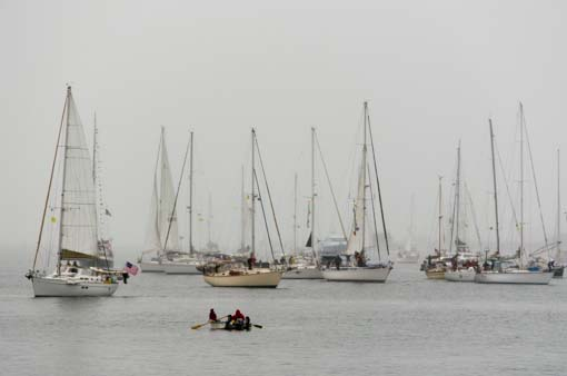 Baja Ha-ha 2013 fleet leaves San Diego