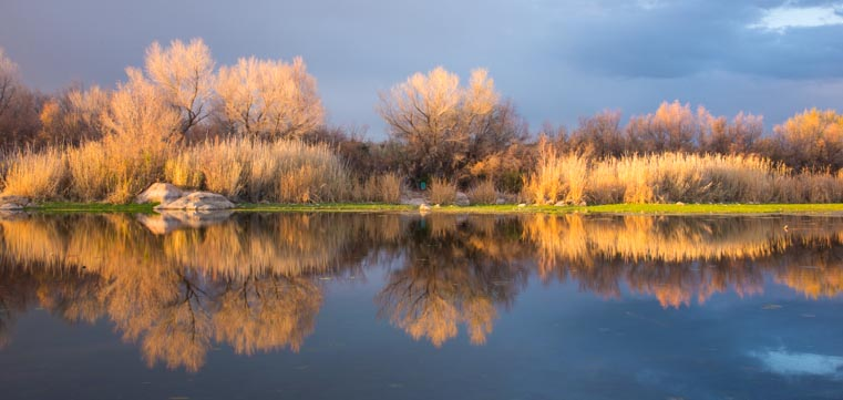 Golden hour along the Salt River