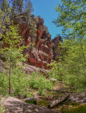 Red rocks in Oak Creek Canyon Arizona