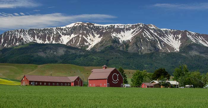 Red barns and Wallowa mountains in Joseph Oregon