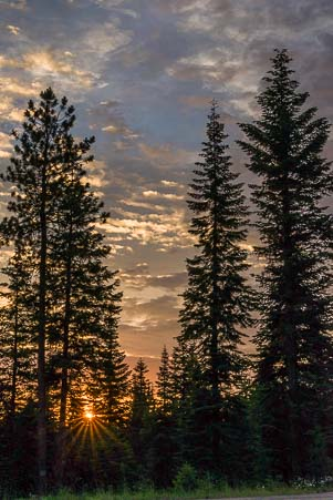 Sunset in the Wallowa-Whitman National Forest Oregon