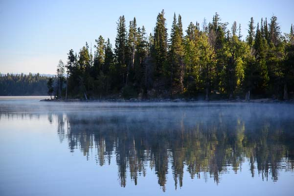 Jenny Lake evergreen trees in morning mist Wyoming