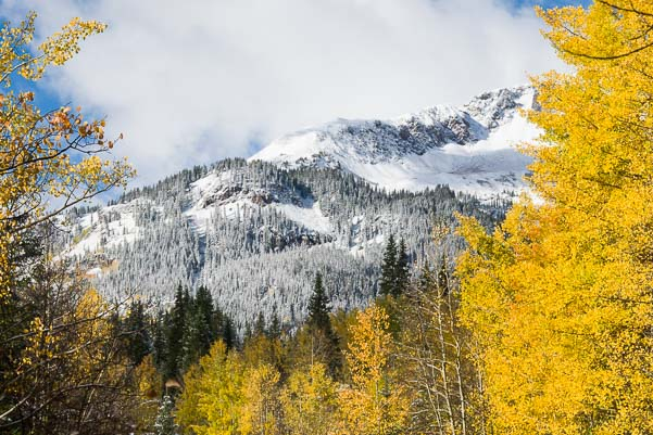 Snowy mountains and fall leaves in Colorado