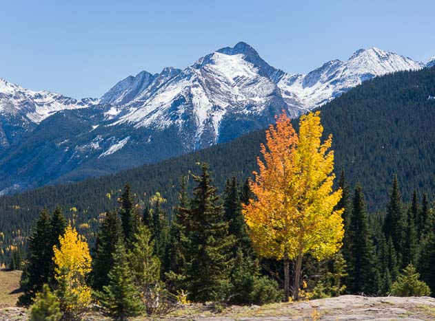 Golden aspen and snow-capped peaks in Colorado's San Juan Mountains