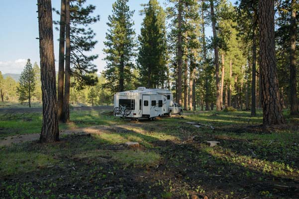 RV camping in the Oregon woods