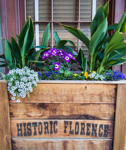 Historic Florence Arizona flower box