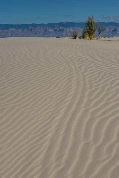 Sand Patterns at White Sands New Mexico