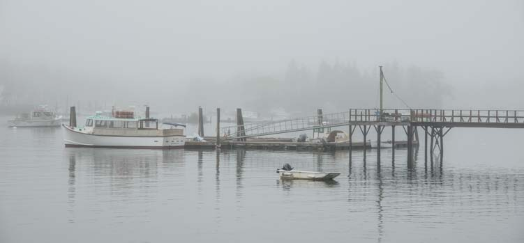 Foggy day at Bass Harbor Maine