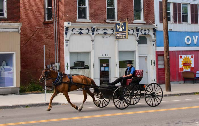 Horse and buggy Amish New York