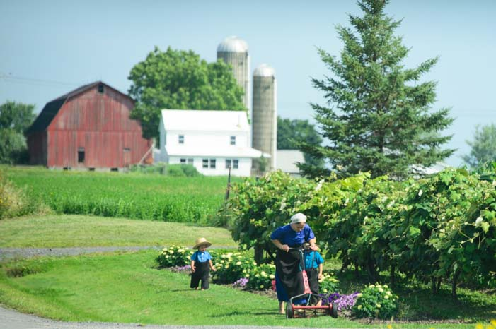 Mowing the lawn in Amish country