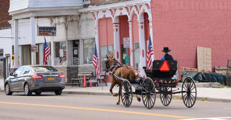 Amish horse and buggy in Ovid New York