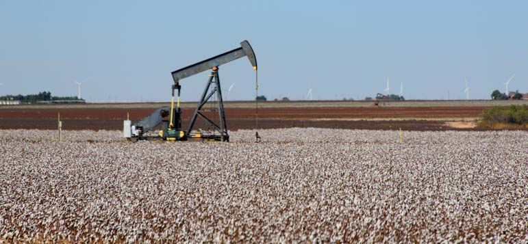 Cotton growing and oil drilling in New Mexico