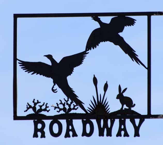 Birds flying metal art street sign Tatum New Mexico