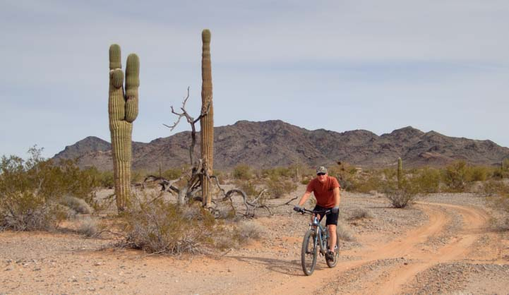 Mountain biking BLM land Quartzsite Arizona