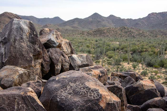 wheel sun sheep petroglyphs Signal Hill Saguaro National Park Arizona