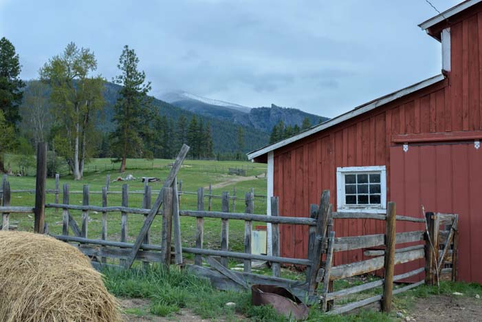 Ranch life in the Bitterroot Valley Montana