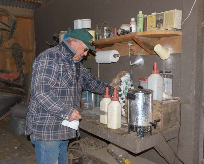Preparing to bottle feed calves on a Montana ranch