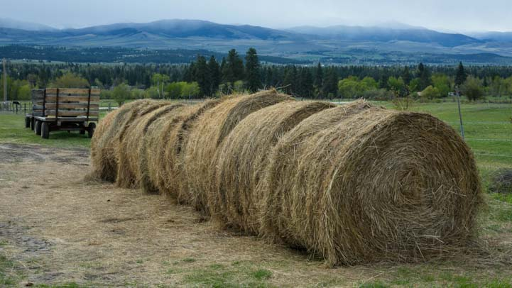 Hay bales on a ranch in Montana