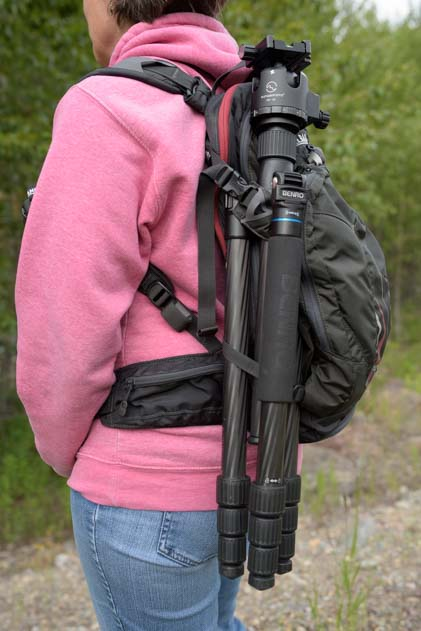 Sunwayfoto XB-52DL ball head on Benro Travel Angel II Tripod Legs carried on a Camelback H.A.W.G