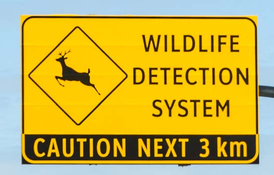 Wildlife Detection System road sign Kootenay National Park Canada