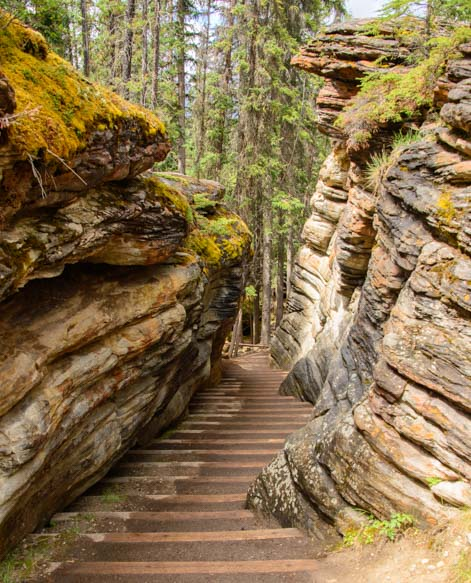 Athabasca Falls Stairway Jasper National Park Canada