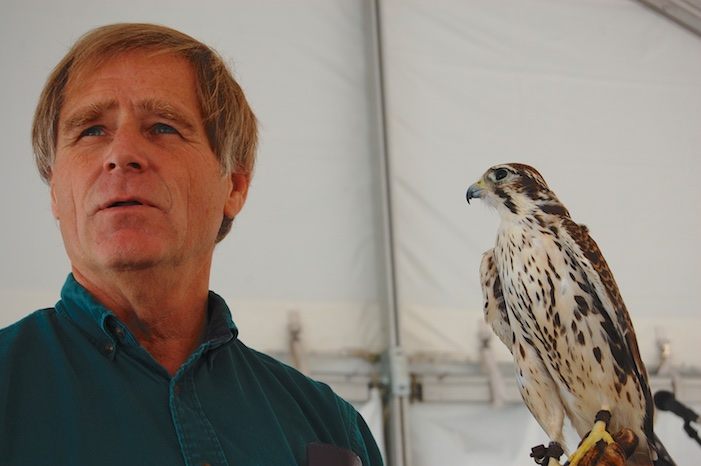 Martin Tyner Peregrine Falcon Igor Education Outreach Iron County Fair Parowan Utah 2008