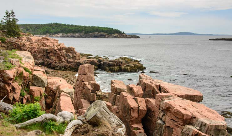 Pink granite boulders on the Acadia National Park shore