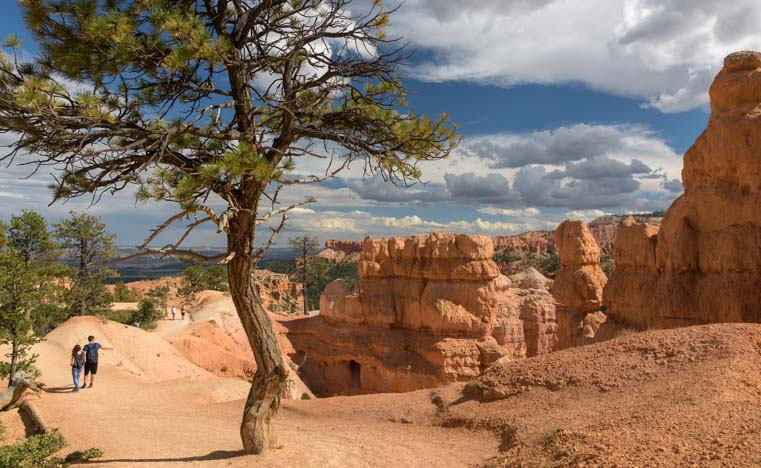 Hiking the Rim Trail Bryce Canyon National Park Utah