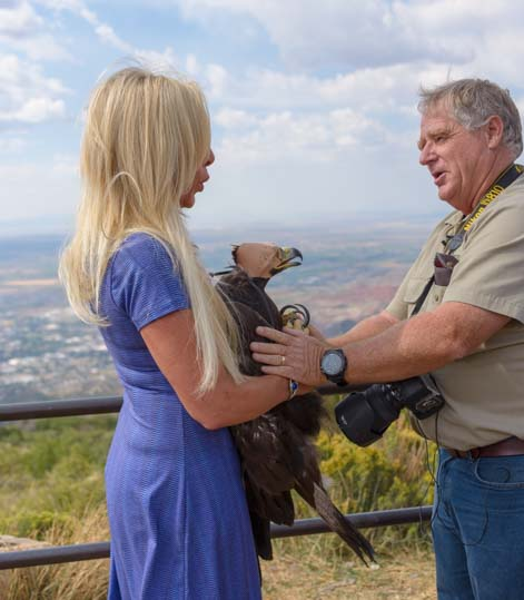 Martin Tyner of Southwest Wildlife Foundation prepares to release a Golden Eagle back into the wild in Cedar City Utah.jpg