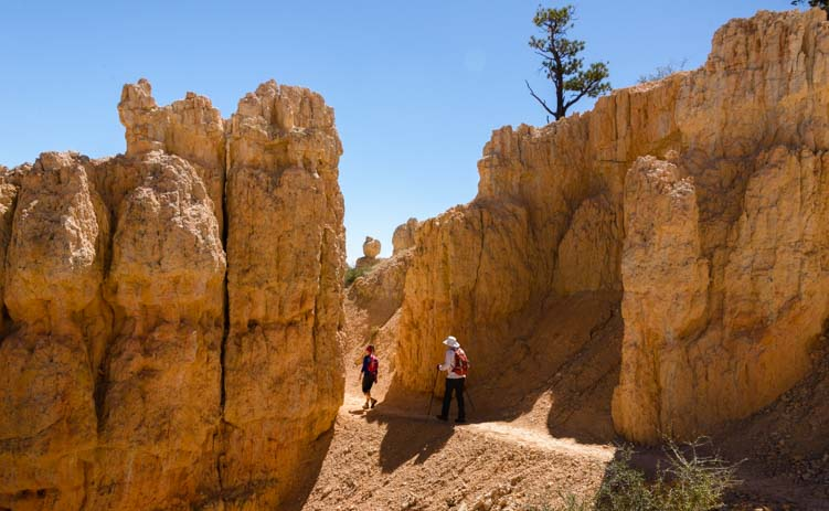 Hike Fairyland Trail Bryce Canyon National Park Utah