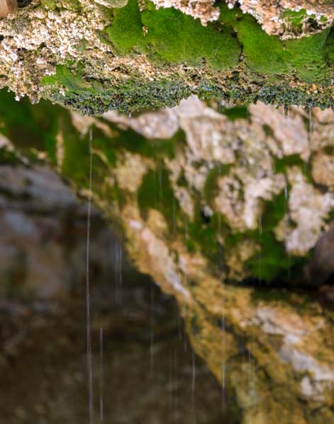 Water seeps through rock and drips down moss in Mossy Cave Bryce Canyon National Park Utah