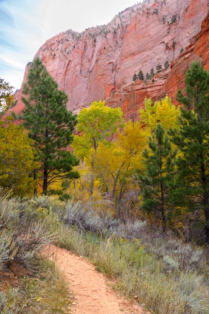 Taylor Creek Trail Kolob Canyons Zion National Park Utah RV trip