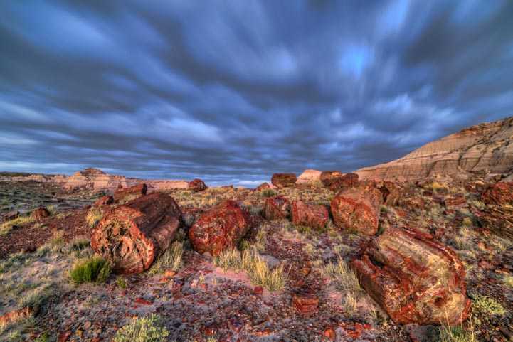 Wild skies at Jasper Forest Petrified Forest National Park Arizona