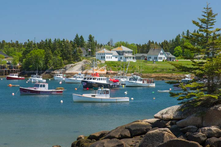 Downeast Maine Harbor