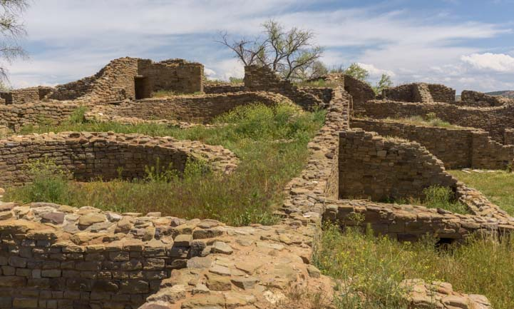Overgrown walls at Aztec Ruins National Monument New Mexico