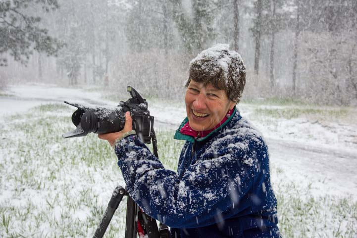 Photography in a spring snowstorm