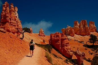 Serenity along the hiking trails at Bryce Canyon