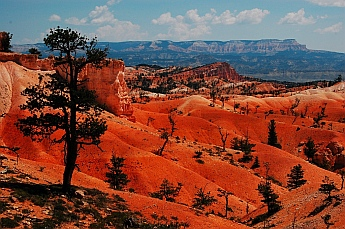 The spires give way to a smooth, orange and red moonscape at Bryce Canyon, Utah