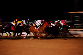 Delta Downs Horse Races