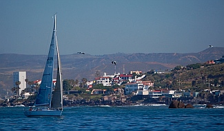 Newport-Ensenada racing sailboats arrive
