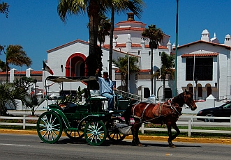 Horse and buggy in front of the Centro Cultural Riviera del Pacifico